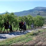 Sierra Pelada trekking horse riding holidays