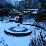                                      Woodlands garden as winter wonderland