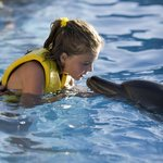 Dolphinaris Cozumel