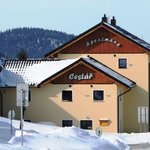 Apartments Cestar