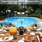 Foto Palm Whispers Luxury Bed and Breakfast