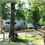 Shady Oaks Campgroundsの写真