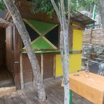 View of Flo's studio deck and closed kitchen window- the Jamaican flag opens t