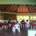                    H.P. breakfast area above the pool &amp; overlooking palm preserve