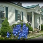 The Country House Bed & Breakfast