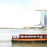 Free Singapore Tour From Airport