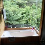 A bathroom with a view