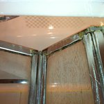 Rotten Shower Screen