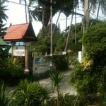 Samui Island Beach Resort and Hotel resmi