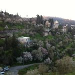 ein kerem village in jerusalem