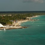                    Dominicus