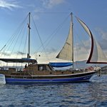 Boat tours by Capt. Osman- Private Day Tours