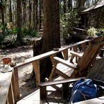 Foto de The Hostel in the Forest