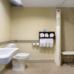  Accessible Rooms Bathrooms
