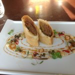                                     crispy duck spring rolls beautifully presented