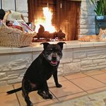 Abby in front of the fireplace in the breakfast room
