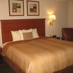  Studio Suite with 1 King Bed