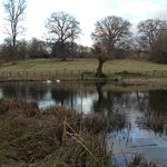                    Lords of the Manor Garden Pond (which we could see from our room)