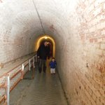 down the tunnels