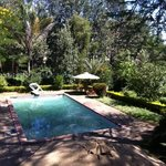 Foto de Milimani Backpackers & Safari Centre