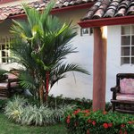 Red palm at Villa Botero