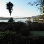                    View from bedroom bay window - February