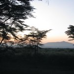 Mt Longonot from the verandah