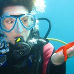 Discover Scuba Diving, cap d'Antibes, Diving School