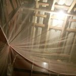 Mosquito net and roof