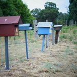                    Letter boxes