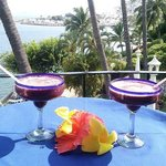  Deliciosas Margaritas de Zarzamora