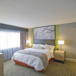  1 King Bed 2 Room Deluxe Suite
