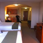 Bilde fra Holiday Inn Express Hotel & Suites Howell