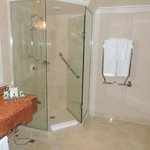                    Lovely glassed in shower with a very nice towel warmer, great rainfall shower 