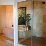 You can see out to the private balcony/ocean from the glassed in shower.