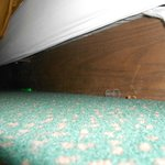  Pen, dirt and spray top debris under bed cover