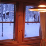 view from dining area of cabin 16