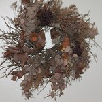                    Dusty wreath