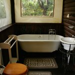 Bushbaby Self-catering Tree Cabin - Bathroom