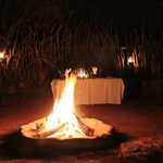 Bonfire and table cloth dinner