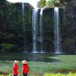                    tourists at whanganei falls (short walk from campsite)