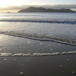 Dunk Island at sunrise, in front of Apollo Jewel