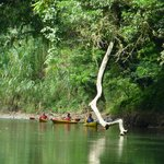 Anywhere Costa Rica - Day Tours