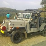  daily forest open jeep safari