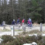 biking in Dalby forest,  lots of fun for all the family!!