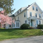 Beech Tree B&B