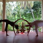 the yoga hall