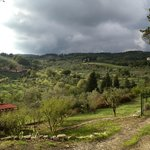 Foto van Bed and Breakfast Il Fornaccio