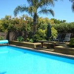 Solar heated pool & sun trap