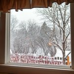                    Snowy day, view from the couch